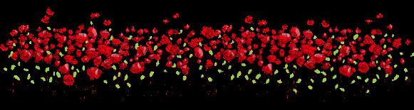 flowers-2755297_960_720