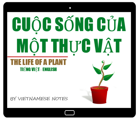 The Life of a Plant | English – Vietnamese Children's Book